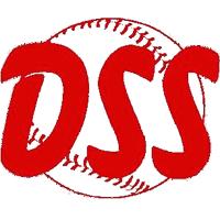 logo_dss.png